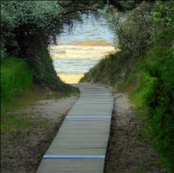 Path leading to happy future
