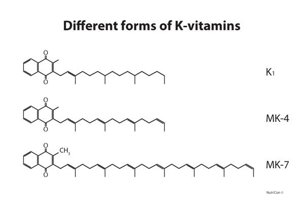 MK-4 and MK-7 are types of vitamin K2
